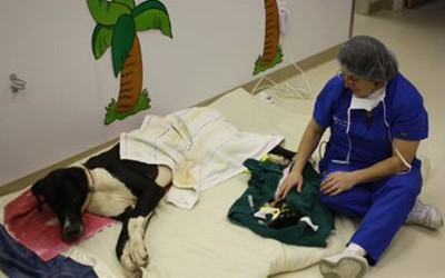A doctor sitting down by a dog in the recovery area at the clinic