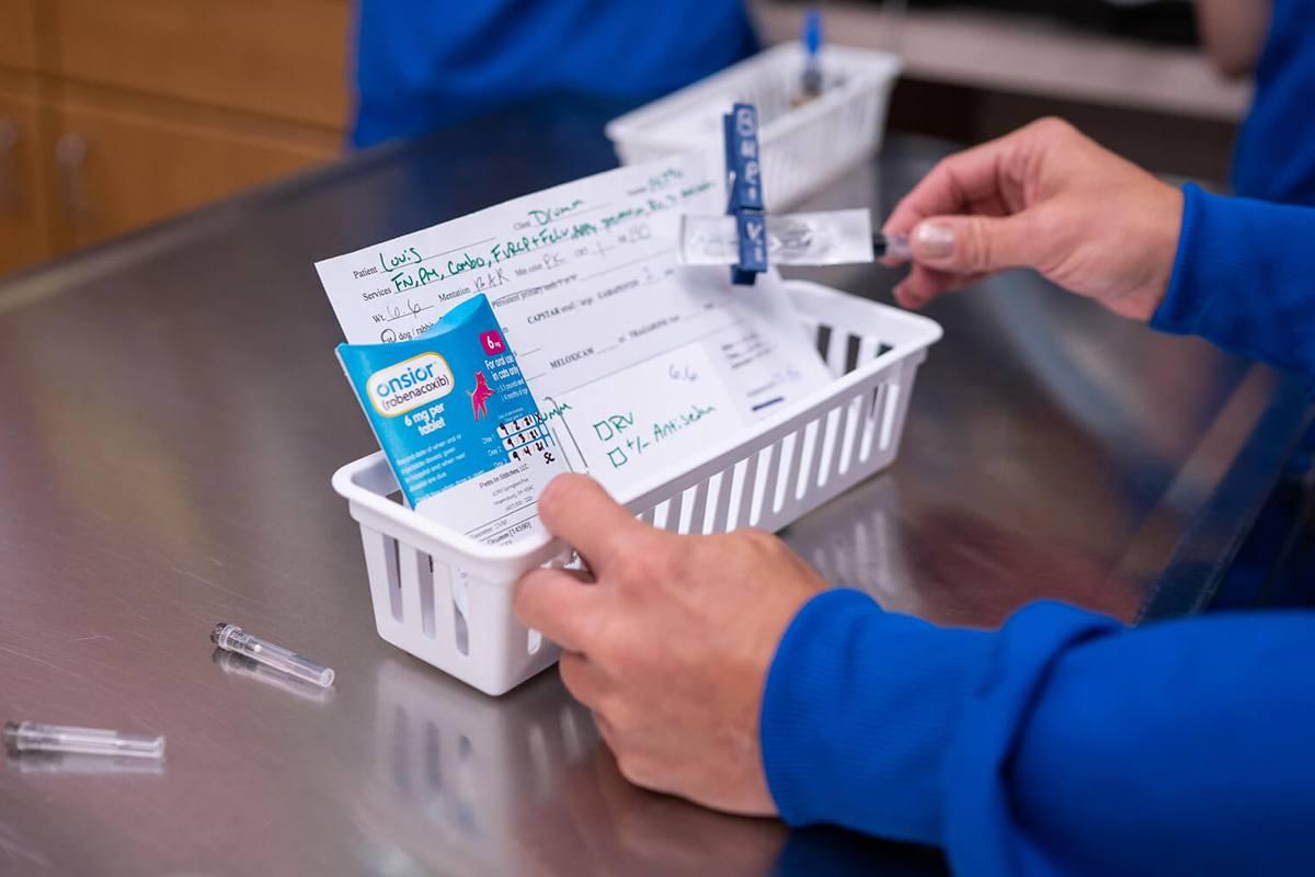 medication tray in a vet office